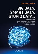 Big Data, Smart Data, Stupid Data�?� | Denoix, Antoine