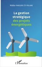 La gestion stratégique des projets énergétiques | Amedzro St-Hilaire, Walter