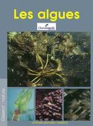 Les algues   Océanopolis