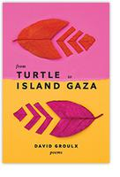 From Turtle Island to Gaza | Groulx, David