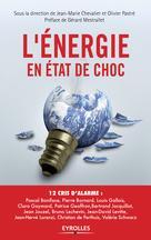 L'énergie en état de choc | Pastré, Olivier