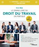 Le grand livre du droit du travail en pratique | Miné, Michel