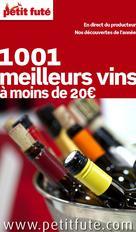 1001 Meilleurs vins 2013 Petit Futé | Auzias, Dominique