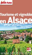 Tourisme et vignoble en Alsace 2013 Petit Futé (avec cartes, photos + avis des lecteurs)   Auzias, Dominique