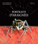 Portraits d'araignées  | Rollard, Christine