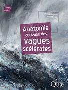 Anatomie curieuse des vagues scélérates | Olagnon, Michel