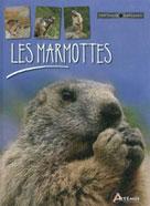 Les marmottes | Dupérat, Maurice