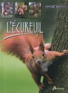 L'écureuil   Visage, Albert