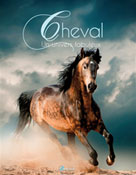 Chevaux | Dal secco, Emmanuelle