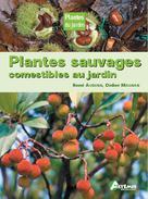Plantes sauvages comestibles au jardin | Auburn, René