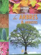 Encyclopédie visuelle des arbres & arbustes | Dupérat, Maurice