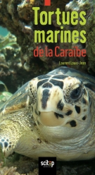 Tortues marines de la Caraïbe | Louis-Jean, Laurent